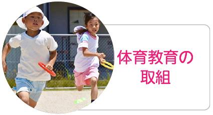 体育教育の取組